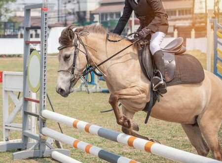 Close up action rider horse jumping over hurdle obstacle during dressage test competition