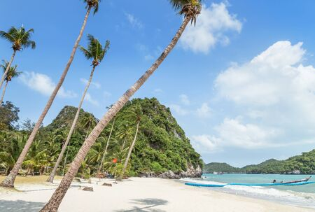 Landscape view at Wua Ta Lap island beach with coconut palm trees in Angthong Islands National Marine Park on sunny day