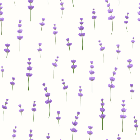 Sprigs of lavender on the light background. Vector.