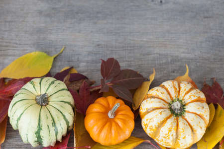 Three gourds with autumn leaves on the grey wooden table, selective focus; Stock Photo