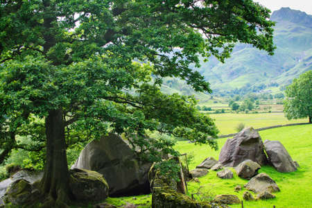cumbria: Lake District National Park, England landscape, mountains on the background, selective focus