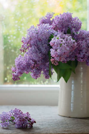 Lilac Flowers In Vase On Window Stock Photo Picture And Royalty