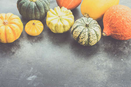 Assortment of pumpkins and gourds on the dark grey background, copy space for text, selective focus, toned