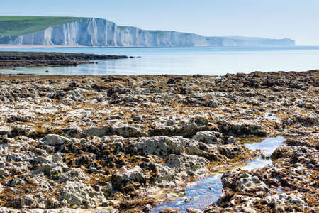 Chalk cliffs walk from Seaford to the Cuckmere Haven beach, East Sussex, England, part of Seven Sisters National park, selective focus