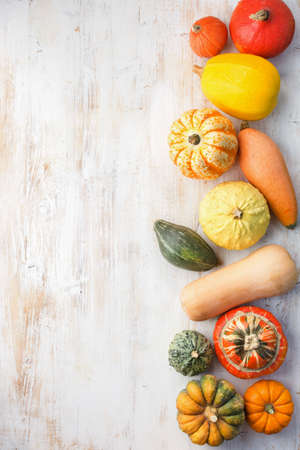Assortment of pumpkins and gourds on the white wooden table background, top view, copy space for text, vertical, selective focus Stock Photo