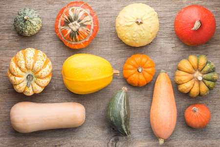 Overhead view of pumpkins and gourds on the dark grey wooden background arranged in a grid, selective focus