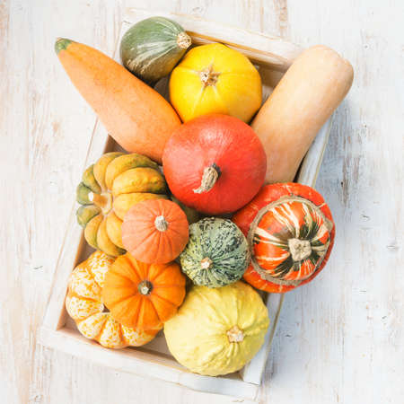 Assortment of pumpkins and gourds in a tray on the white wooden table background, vertical, selective focus