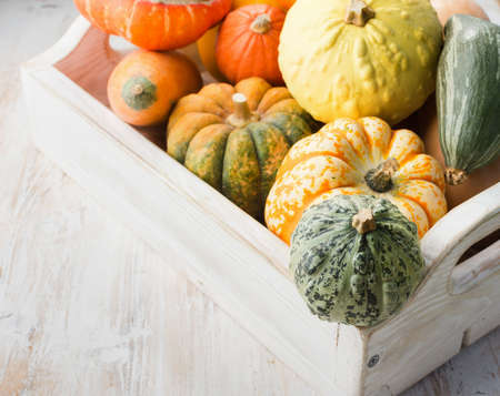 Assortment of pumpkins and gourds in a tray on the white wooden table background, selective focus Stock Photo - 108965453