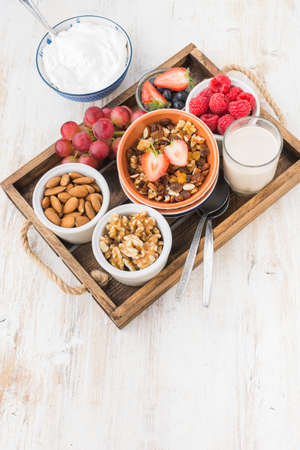 Paleo grain free nut and fruit granola in a tray with fruits and berries, nut milk, coconut yogurt, copy space, top view, selective focus Stock Photo