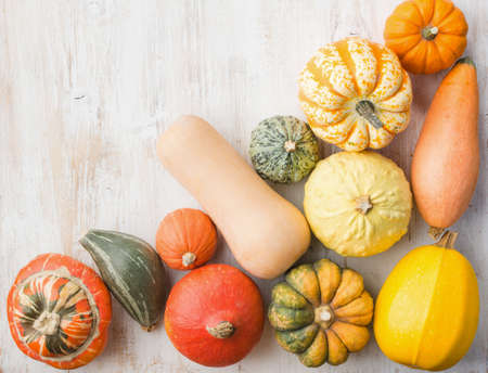 Assortment of pumpkins and gourds on the white wooden table background, top view, copy space for text, selective focus