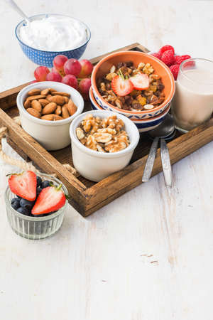 Paleo nut and fruit granola in a tray with fruits and berries, nut milk, coconut yogurt, copy space, selective focus Stock Photo - 109346157