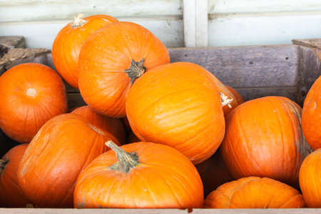Wooden box filled with pumpkins, farm produce, selective focus Stock Photo