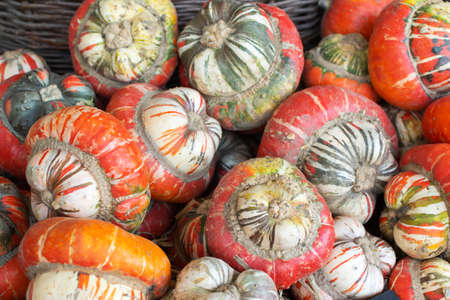 Wooden box filled with turban pumpkins, farm produce, selective focus