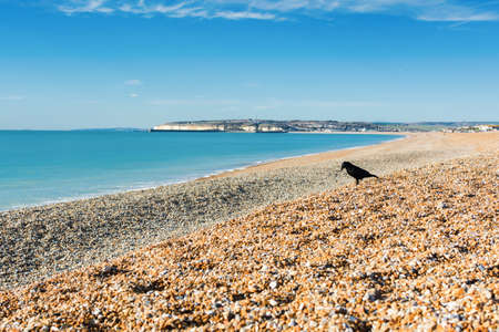 Seaford beach, East Sussex. England, pebbly beach and blue sea, view of Newhaven town, selective focus