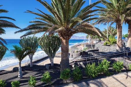 Puerto del Carmen beach in Lanzarote, Canary islands, Spain. blue sea, palm trees, promenade, selective focus