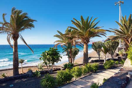 Plage de Puerto del Carmen à Lanzarote, îles Canaries, Espagne. mer bleue, palmiers, mise au point sélective