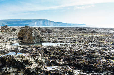 Hope Gap beach in a low tide, near Seaford and Eastbourne, East Sussex, England, view of the chalk cliffs and stones, beach, selective focus