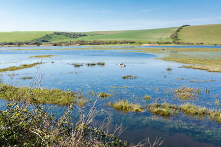 Views of Cucmere river near Seaford and Eastbourne, East Sussex, footpath leading to Cuckmere Haven beach, selective focus