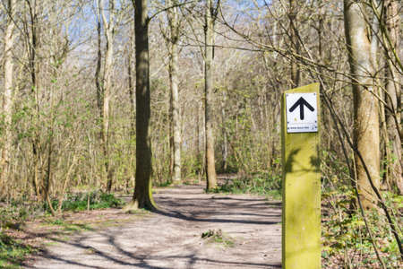 Friston forest near Seaford, East Sussex, England, view of the trees in spring, sign showing the way to South Downs walk, near river Cuckmere, selective focus