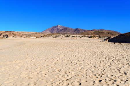 View of beautiful Playa de la Cera beach, blue sea, yellow sand, cliffs. Papagayo, Playa Blanca, Lanzarote, Canary Islands, selective focus Stock Photo