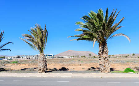 Brown landscapes in Costa Teguise, Lanzarote, selective focus