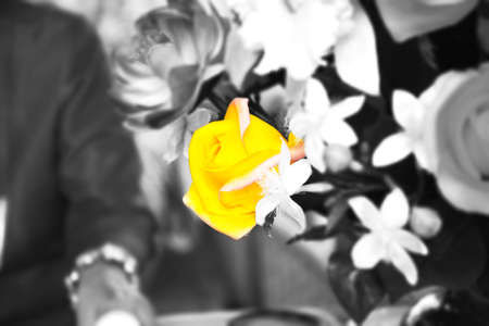 Artificial Flowers color, black and white picture