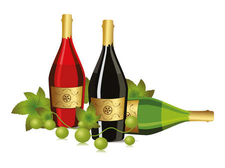 white background with champagne bottle and grapevine vector for new year and other events Vector