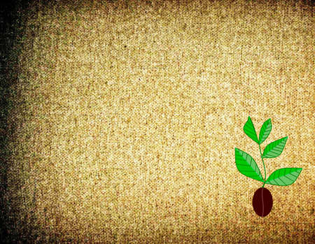 coffee tree on background in the form of brown rough burlap with shading