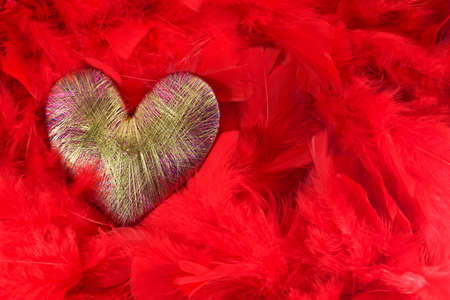 saturated color: The heart of the golden threads of red feathers