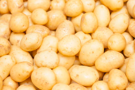 Close-up of a fresh raw potatoes background 写真素材