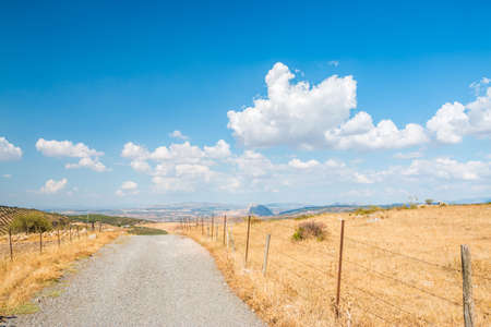 far away: Remote road leading far away. Summer landscape. Stock Photo