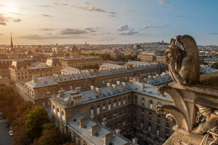 View from height of beautiful Paris city with old gargoyle of Notre Dame in sunset clouds