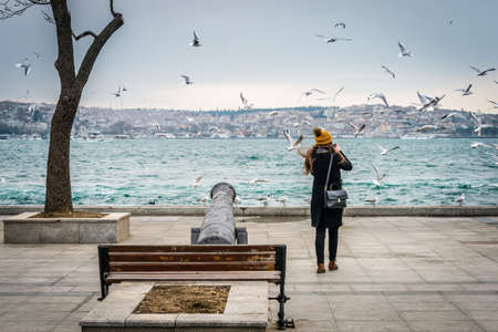 istanbul: Istanbul, Turkey - January 28, 2016: Turkish girl from the back is photographing seagulls in Besiktas, Istanbul Editorial