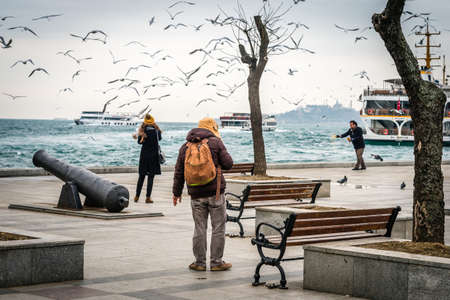 istanbul beach: Istanbul, Turkey - January 28, 2016: Turkish people are feeding seagulls near Bosphorus in Besiktas, Istanbul Editorial
