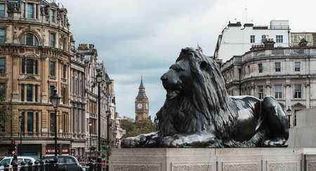trafalgar: London, United Kingdom - October 20, 2016: London Trafalgar Square lion and Big Ben tower at background