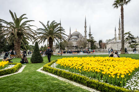 Istanbul, Turkey - April 12, 2017: People are visiting Sultanahmet neighborhood of Fatih, Istanbul near the Blue moaque during the Tulip festival in April.