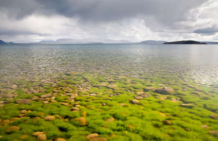 Stones and algae at bottom seen through the clear water of lake in Thingvellir national park, Iceland photo