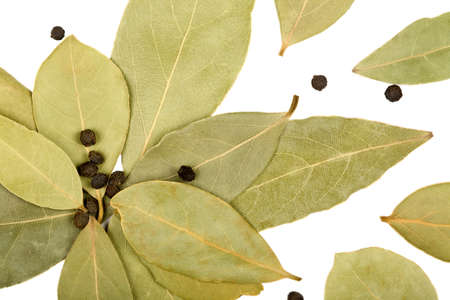 Bay leaves and black peppercorns isolated on white background