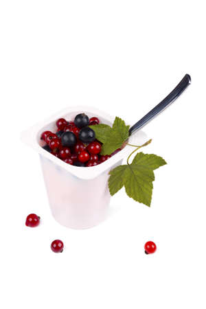 Yoghurt with black and red currants in plastic container isolated on white