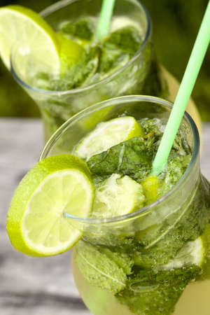 Fresh mojito cocktail in glass tumblers Stock Photo - 17450381