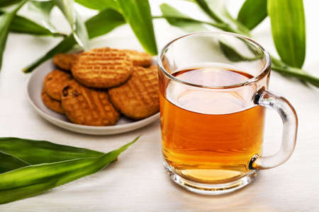 Cup of black tea, biscuits on a plate and green leaves as background Stock Photo