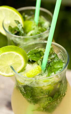 Fresh mojito cocktail in glass tumblers Stock Photo - 22486239