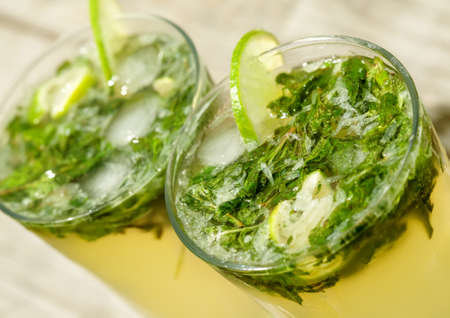 Fresh mojito cocktail in glass tumblers Stock Photo - 23134286