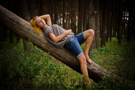Pretty girl with red hair on a log in the forest. photo