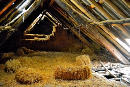 Hut in Irati, Pyrenees  Hay in stable in a tipic hut at the basque pyrenean  photo