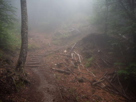 The mist descended on a rocky path on the path along an exciting difficult walk while climbing Mount Olympus in Greece