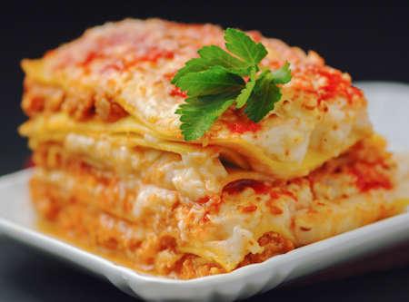 portion: Closeup portion of lasagna