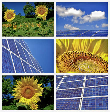 megawatt: Sunflowers and solar panels collage