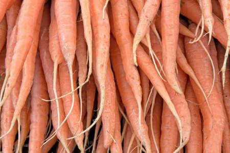 Organic carrots at a market Stock Photo