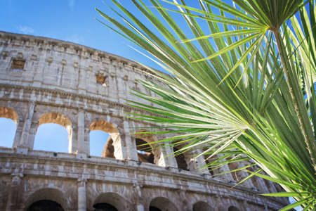 View of the Colosseum in Rome - Italy